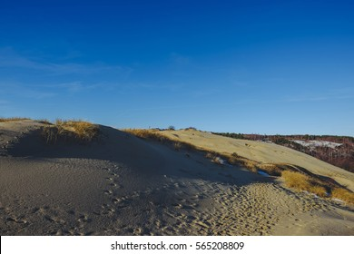 Parnidis dune (also known as The Lithuanian Sahara)