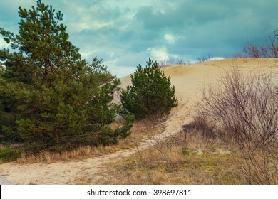 Parnidis dune slope in autumn, Neringa, Lithuania