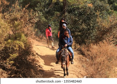 PARO, BHUTAN -NOV 29 : Unidentified people riding on horse to reach the Tiger's nest monastery on November 29, 2018 in Paro, Bhutan. Tiger's nest monastery is a major tourist attraction in Bhutan