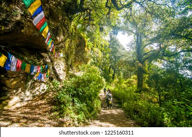 Paro/Bhutan - October 2016: Tourists are hiking path to the famous Paro Taktsang or Tiger's Nest monastery, Bhutan.