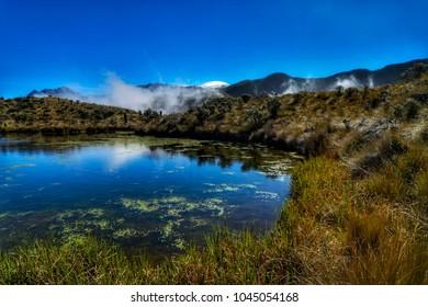 Parque Nacional Los Nevados,Colombia