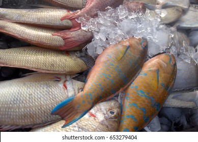 Parrot fish on dispaly for sale at local market. Also known locally as 'Ikan batu' and lives at shallow water, close to the reef, tropical seas around the world.