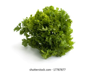 Parsley bouquet on a white background