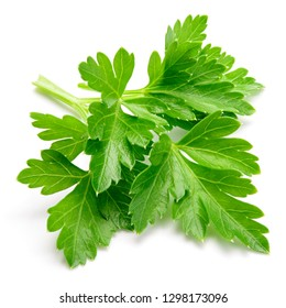 Parsley. Parsley aislado.