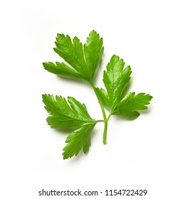 Parsley isolated. Parsley on a white background. Juicy natural parsley leaves
