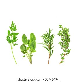 Parsley, sage, rosemary and thyme herb leaf sprigs, over white background.