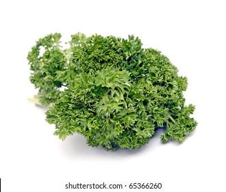 parsley verdure on white background