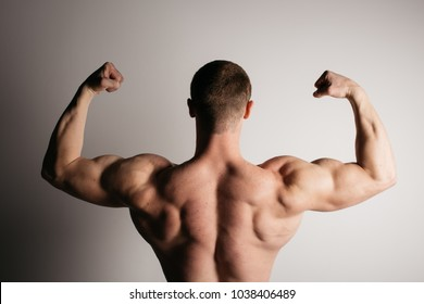 back muscle images stock photos vectors shutterstock