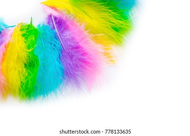 Part of the costume for the Brazilian carnival. Colored bright feathers.