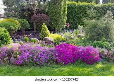 Part of a fine European  spring May garden landscape.  Decorative bushes trees and flowers on a beds.  Sunny day