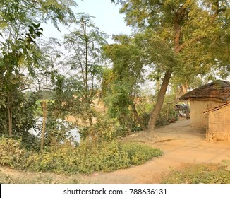 A part of an Indian village with huts or rural houses, trees, small lake and a village path. It's a very nice natural scenery in the countryside