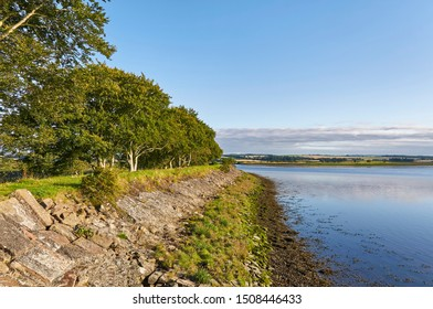 Part of the old harbour at the Montrose Basin Nature Reserve in an area called The Lurgies at the west end of the Basin near Montrose, Angus in Scotland.