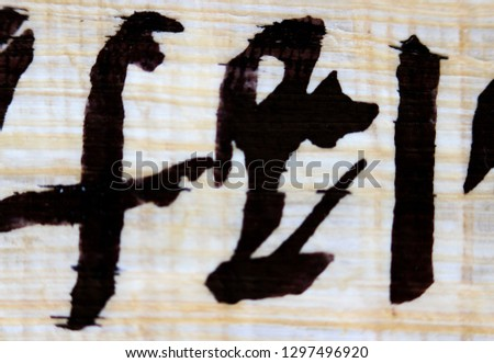 Part from Papyrus containing