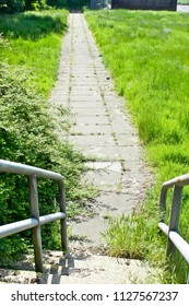 Part of a stone path and steps in an overgrown parkland