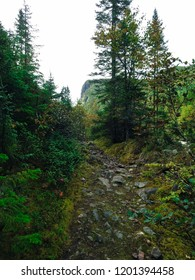 Part of the trail ''La Croisée'' in Jaques-Cartier National Park