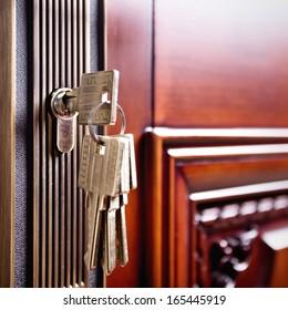 the part of wooden door with metal handle
