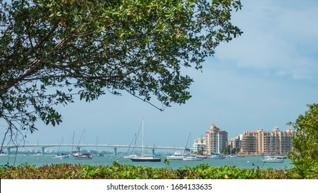 Partial midday view of John Ringling Causeway, Sarasota Bay, and downtown high-rises, seen from Marie Selby Botanical Gardens in Sarasota, Florida, USA, for coastal, travel, and urban themes