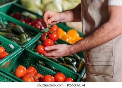 partial view of shop assistant arranging fresh vegetables in grocery shop