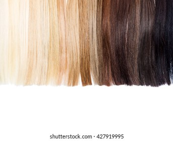 Partly isolated palette samples of dyed hair from blond to black. Hair extension background. Text space