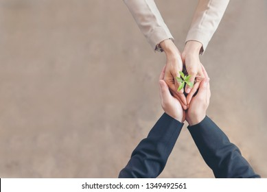 Partner trust mission of ecosystem plant business holding green plant together symbolism of green business company with sustainable development ecology concept. Sustaining partner trust hands together