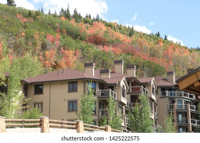 Parts of the forest show early fall colors as the Autumn season announces itself in early September in Park City, Utah