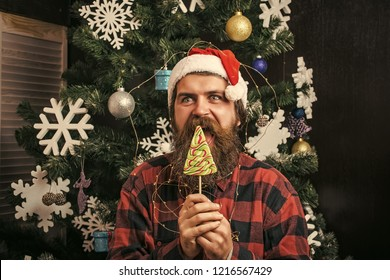 Party celebration and blowjob. Winter holiday and xmas. santa claus man in hat at decoration. Christmas man with beard on happy face and lollipop. New year guy lick candy or sweet.