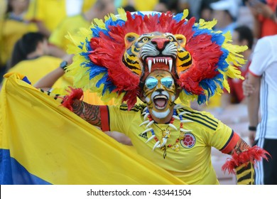 Pasadena, USA - June 07, 2016: Man in a tiger costume during Copa America Centenario match Colombia vs Paraguay at the Rose Bowl Stadium.