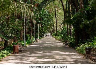 Paseo del Parque in Malaga, Andalucia,Spain