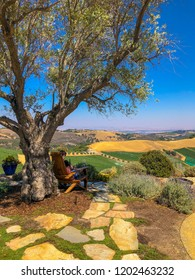 Paso Robles / CA - Sept. 3, 2018: Man Enjoying Wine Tasting Views