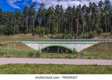 Passage for wild animals under the national road near Olsztyn, Poland