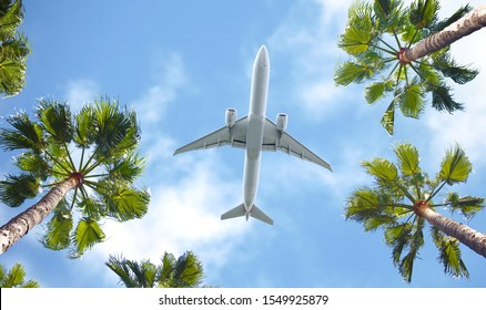 Passenger airplane flying above the tropical palm trees. Bottom view of the aircraft.