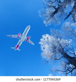 Passenger airplane flying over snow-covered trees