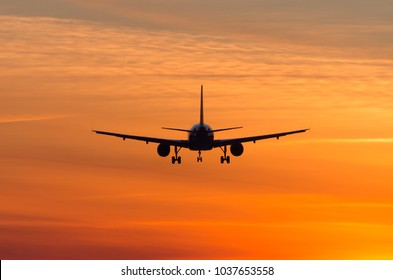 passenger plane is landing in the airport at early morning at sunrise time in the frosty winter air
