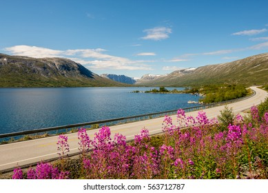 Passing by the beautiful landscapes of Norway on a roadtrip
