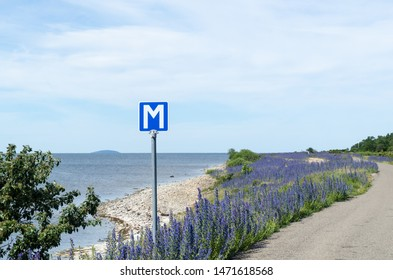 Passing place by a blossom roadside with blue flowers at the swedish island Oland