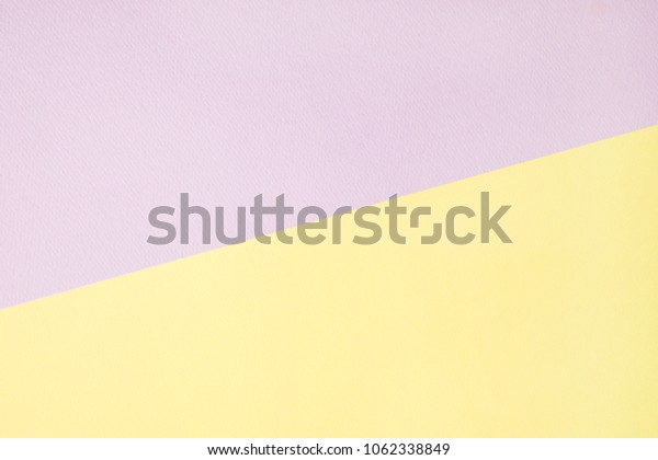 pastel colored paper background. layout.