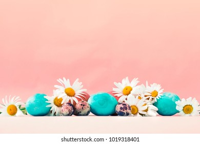 Pastel and colorful easter eggs with daisy flowers