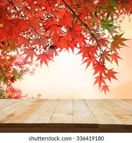 pastel fole of Japanese maple tree leaves colorful background in autumn and wood floor. Beauty natural background