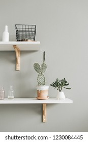 Pastel interior design concept with home plants.