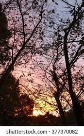 Pastel mountain sky at sunset