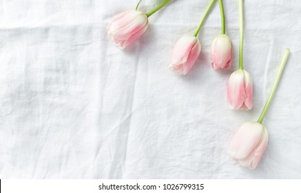 Pastel Pink Tulips on White Linen Cloth. Seen from above. Copy space