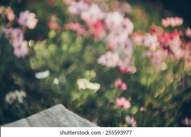 Pastel  vintage background that inspiration from beautiful  flowers