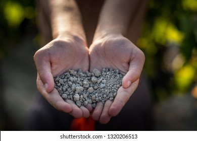 PASTINA, PISA, ITALY - AUGUST 10, 2018: hands show the soil for the production of wine in the valley between the ancient village in the province of Pisa, Italy