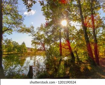 Pastor Bode pond in the Luneburg Heath near Wesel Undeloh