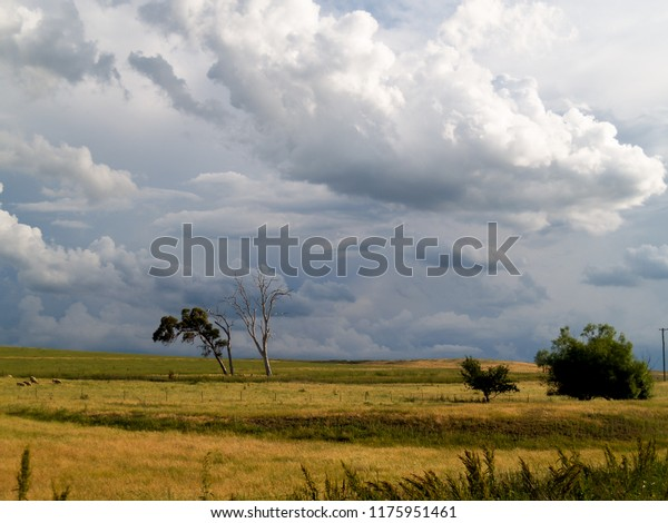 Pastoral Australian landscape with dramatic clouds, taken in country New South Wales just west of the Blue Mountains.