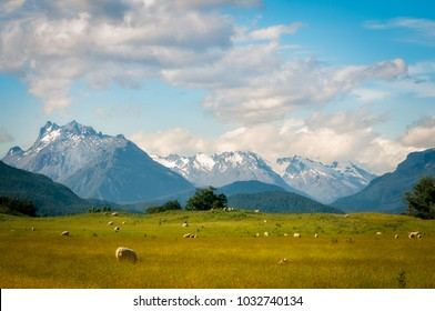 Pastoral New Zealand Landscape scene with snow-capped mountains and meadows with sheep from the remote Kinloch-Glenorchy road in Otago Region, New Zealand, South island.