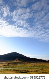 Pasture of horses in autumn, blue sky and white clouds, autumn grasses, and the morning fresh air