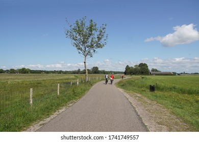 Pasture landscape. Cyclists, who ride in the spring on a road along the meadows to the Dutch village of Bergen.