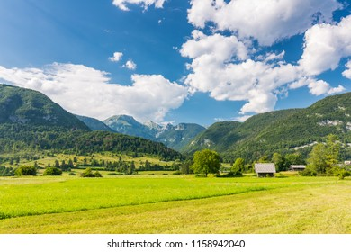 Pasture meadow in Slovenia. Green grass, pasture house and Julian alps in background. Blue sky in summer. Triglav national park.