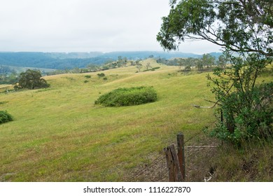 Pasture in New South Wales in Australia.